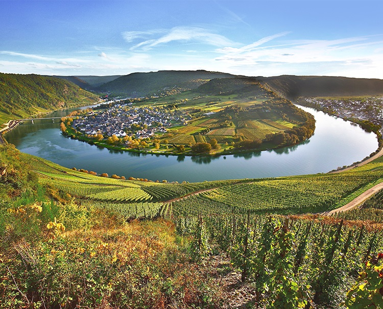 Vineyards-of-the-Rhine-&-Moselle